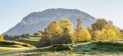 Fronalpstock hinter Herbstfarben. Aufgenommen unterhalb von Seelisberg. (Bild: Erich Heiniger (Seelisberg, 13. Oktober 2018))