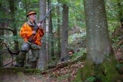 ...im Wald auf Position. Dann heisst es für den Jäger... (Bild: Raphael Rohner)