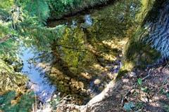Farben-Spiegelung im Wasser der Winon, beim Weiler Winon. (Bild: Josef Habermacher (Gunzwil, 16. Oktober 2018))