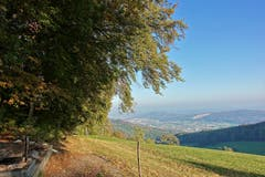 Sommerlicher Herbsttag auf dem «Allerheiligenberg» oberhalb Hägendorf (SO). (Bild: Josef Habermacher)