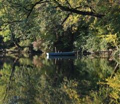 Bilderbuch-Herbst am Atzenholzweiher in Häggenschwil. (Bild: Yvonne Aldrovandi-Schläpfer)