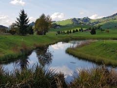 Weiher beim Golfplatz Gonten. (Bild: Brigitta Rutishauser)