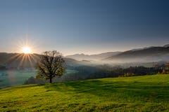 Sonnenuntergang bei Haslen Schlatt (AR). (Bild: Luciano Pau)