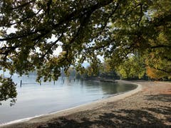 Herbstfarben prägen den verlassenen Badestrand. (Bild: Brigit König (Luzern, 16. Oktober 2018))