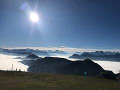 Fantastische Rundsicht übers Nebelmeer. (Bild: Christa Bonati (Rigi, 20. Oktober 2018))
