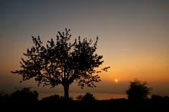 Sonnenuntergang, aufgenommen auf dem Eichberg. (Bild: Marianne Schmid)