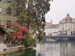 """Im Zöpfli, aufgenommen vom Platz vor der Gartenwirtschaft Restaurant """"Mill'Feuill"""". (Bild: Jost Amrein, 19. Oktober 2018)"""