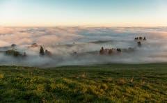 Sonnenaufgang über dem Nebelmeer des Zugerbergs IV. (Bild: Daniel Hegglin)
