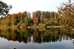 Gespiegelte Herbststimmung am Gübsensee (Bild: Irene Weibel)