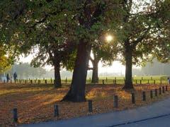 Herbstliches Abendlicht über der Kreuzbleiche (Bild: Doris Sieber)