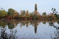 Herbststimmung am Gübsensee (Bild: Irene Weibel)