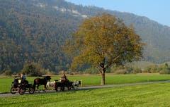Herbstliche Pony-Kutschen-Ausfahrt (Bild: Sepp Bernasconi (Stans, 20. Oktober 2018))