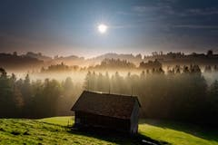 Die Sonne durchsticht den Nebel in Schwellbrunn. (Bild: Luciano Pau)