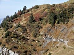 """""""Der Weg ist das Ziel"""" ! Hier auf dem Schächentaler Höhenweg, in dieser wunderschönen Naturlandschaft, kann der Weg tatsächlich nicht lang genug sein. (Bild: Margrith Imhof-Röthlin (22. Oktober 2018)"""