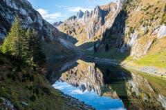 Herbstspiegel vom Fählensee, Alpstein (Bild: Andrea Pohle)