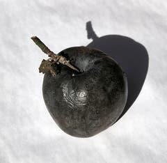 Ein schwarzer Apfel (Bild: Franz Krummenacher (Rothenburg, 24. Oktober 2018))