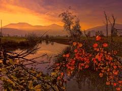 Sonnenuntergang im Naturschutzgebiet Altstätten. (Bild: Toni Sieber)