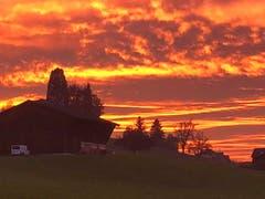 Feuriger Himmel über Goldach. (Bild: Guido Rupp)