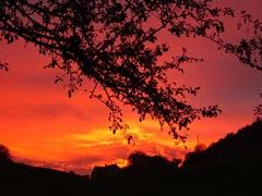 Flammender Horizont über Grub AR. (Bild: Karin Oertle)
