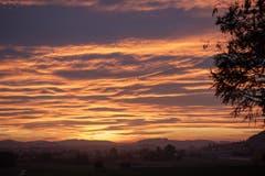 Das goldene Lauchetal - aus Richtung Affeltrangen aufgenommen. (Bild: Thomas Segenreich)