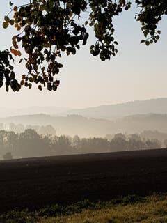 Sonne und Nebel über Zihlschlacht. (Bild: Reto Schlegel)