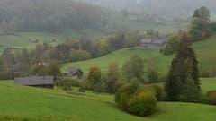 Verregneter Tag in Blomberg, Ebnat-Kappel. (Bild: Martin Giger)