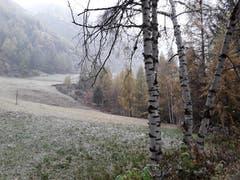 Eine dünne Schneeschicht liegt auf dem Land. Aufgenommen in Saas Balen. (Bild: Bruno Ringgenberg)