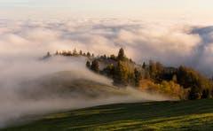 Der Nebel breitet sich aus. (Bild: Daniel Hegglin)