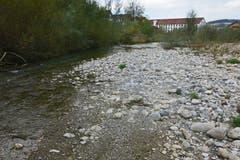 Nicht nur der Rhein, auch die Lorze dürstet nach Wasser. Morgen ist die Durststrecke vorbei. (Bild: Robert Leutwyler)