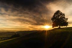Sonnenuntergang in Hohentannen. (Bild: Daniel Bisang)