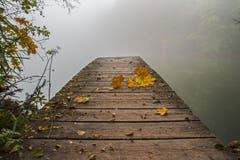 Nebliger Oktobermorgen auf Drei Weieren. (Bild: Franziska Hörler)
