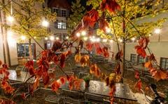 Farbenpracht in einem Innenhof in der Stadt Zug. (Bild: Daniel Hegglin (Zug, 27. Oktober 2018))