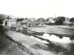 Der Mühleweiher von Süden fotografiert. Der Hang ist heute überwachsen. (Bild: zVg)