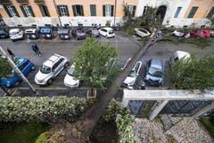 Der Baum blockierte diese Strasse in Rom. (Bild: Angelo Carconi/ANSA via AP (29. Oktober 2019))