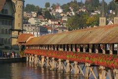 Und es blüht noch immer wunderbar. Ein Herbsttag in Luzern, sonnig und klar. (Bild: Edi Ulmi, 4. Oktober 2018)