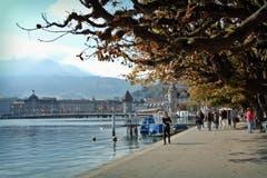 Sonntagsspaziergang. (Bild: Larisa Gheorghe (Luzern, 7. Oktober 2018))