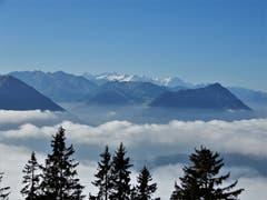 Hoch über der Nebelgrenze auf der Rigi machte heute das Wandern doppelt Spass, so dass man bei dieser herrlichen Fernsicht jeden allfälligen Kummer und auch die Sorgen sehr schnell vergass. (Bild: Margrith Imhof-Röthlin (Rigi-Kaltbad, 9. Oktober 2018))