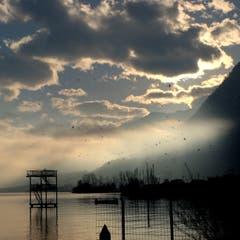 Das Strandbad Buochs im Herbst: Ein Paradies für die Vögel. (Bild: Sepp Bernasconi (Ennetbürgen, 8. November 2018))
