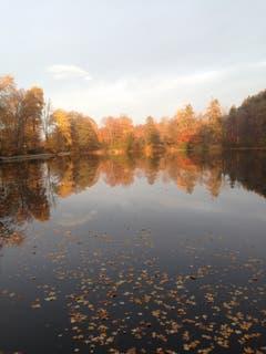 Herbstzauber bei den Drei Weihern. (Bild: Sibylle Reinert)