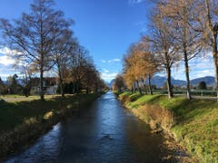 Binnenkanal in Widnau im Herbst (Bild: Toni Sieber)