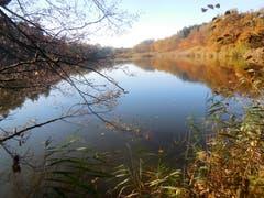 Herbst am Biessenhofer Weiher (Bild:Robert Jehlen)