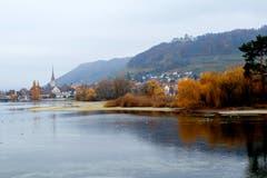 Das bunte Laub der Bäume in Stein am Rhein leuchtet im Nebel. (Bild: Fritz Sigg)