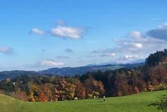 Letzte Herbsttage in Dietschwil (Bild: Liliane Germann)