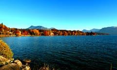 Traum-Herbsttag. Aufgenommen am Hans Erni Quai in Luzern. (Bild: Walter Buholzer)