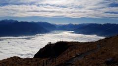 Nebelflutschau am Hohen Kasten . (Bild: Klaus Businger)