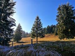 Traumhafte Landschaft untermalt durch die herbstliche Stimmung auf dem Glaubenberg. (Bild: Urs Gutfleisch (17. November 2018))