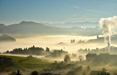 Nebel im Speicher/Vögelinsegg (Bild: Claudia Melotti Knöpfel)