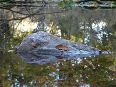 Der Fels in der (herbstlichen) Brandung. (Bild: Stephan Lendi)