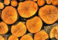 Holz isch heimelig. (Bild: Toni Sieber)