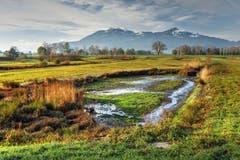Bunter Herbst im Schollenriet (Bild: Toni Sieber)